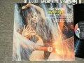 MIKE SHRPE - MYSTIC NIGHT / 1969 US ORIGINAL Promo STEREO  Used LP