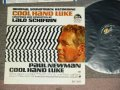 V.A. OST ( by LALO SCHIFRIN  ) - COOL HAND LUKE  / 1968 US PROMO Emboth  ORIGINAL Rare!!! MONO Used LP